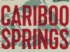 Cariboo Springs Lager ▶ Gallery 1386 ▶ Image 4021 (Label • Этикетка)