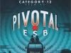 Pivotal ESB ▶ Gallery 2157 ▶ Image 6999 (Label • Этикетка)
