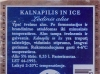 Kalnapilis in Ice ▶ Gallery 267 ▶ Image 2033 (Back Label • Контрэтикетка)