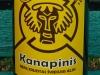 Kanapinis ▶ Gallery 2755 ▶ Image 9412 (Glass Bottle • Стеклянная бутылка)